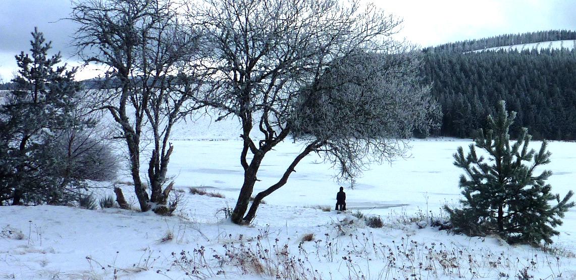 lac de serviere gelé