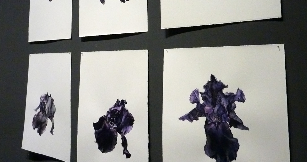 iris - expo jardins - grand palais