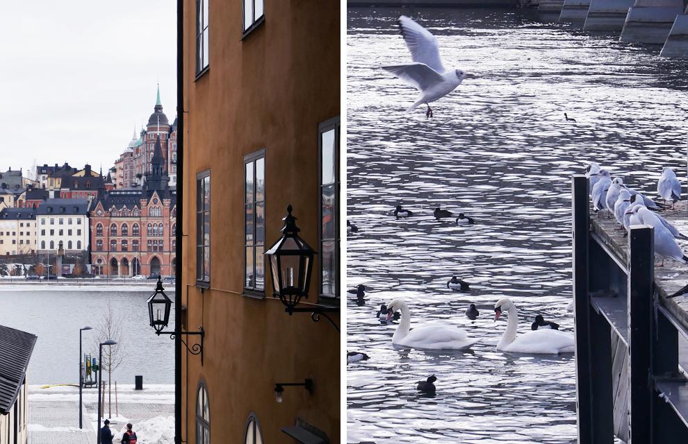 flaner à stockholm