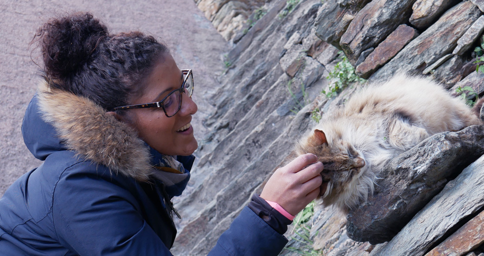 chat a conques