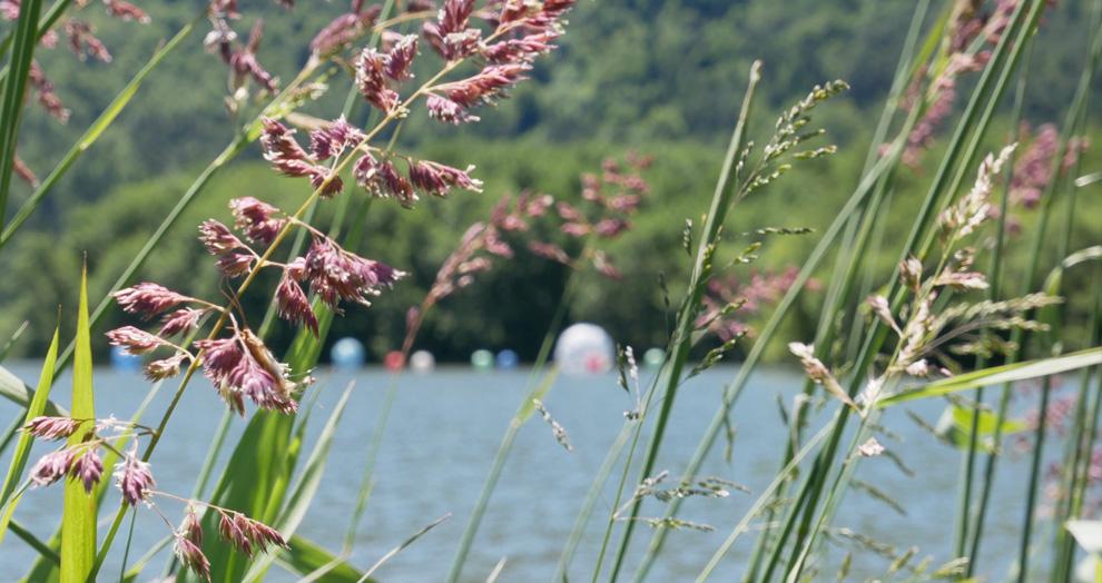 perles du lac, horizons sancy