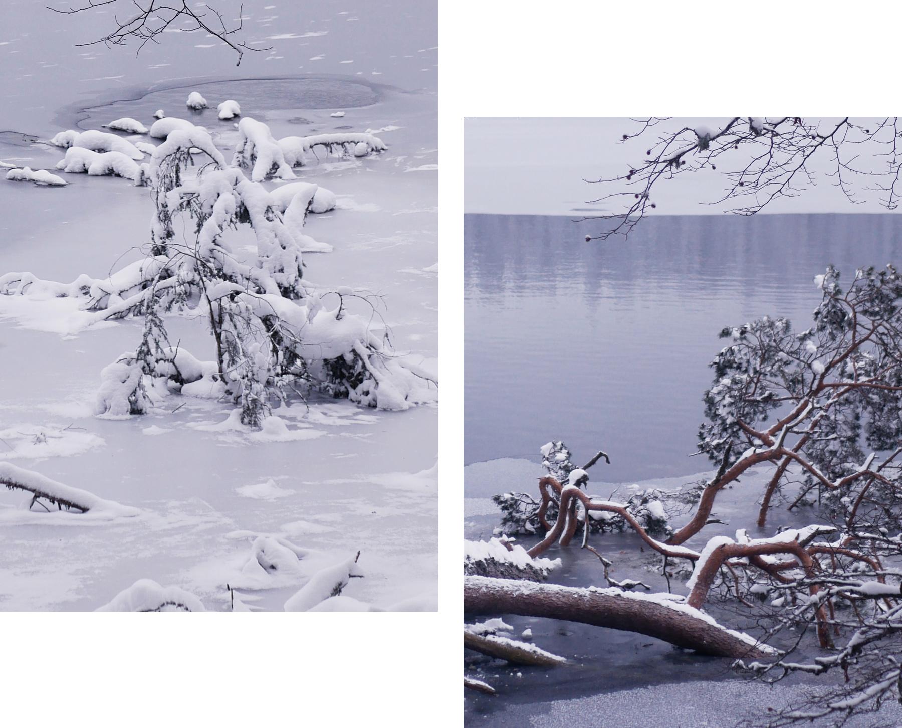 lac pavin sous la neige