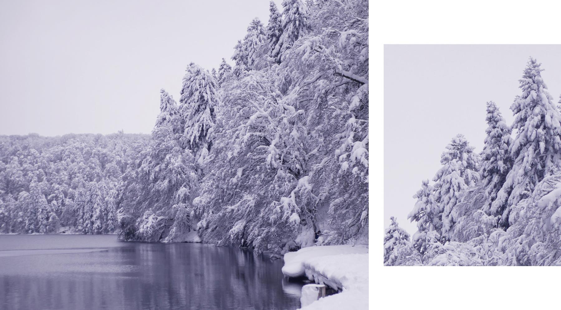 lac pavin enneigé