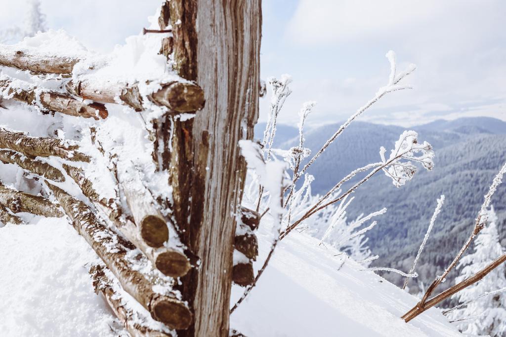 chemin des muletiers en hiver