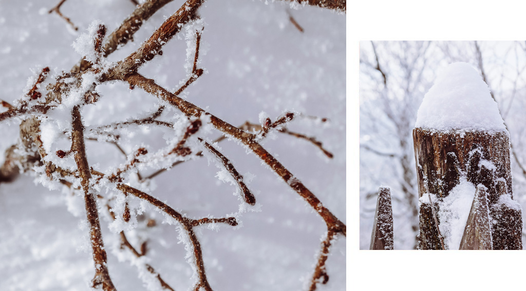 balade dans la neige en auvergne