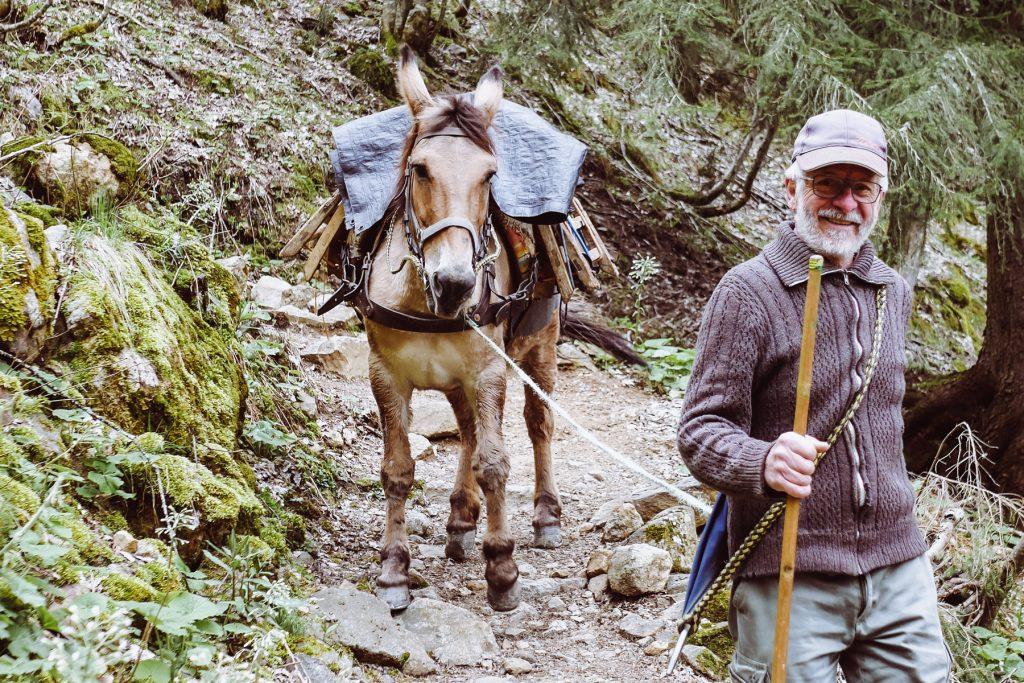 mule sur le sentier du lac du lauvitel
